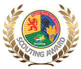 Scouting Awards 2019